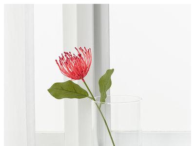 Catorce ideas de regalo decorativo de última hora para quedar bien en San Valentín
