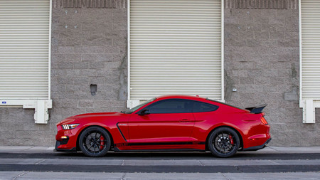 Shelby Gt500 Y Gt350 Signature Edition 6