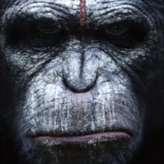 Foto 4 de 9 de la galería el-amanecer-del-planeta-de-los-simios-carteles en Espinof