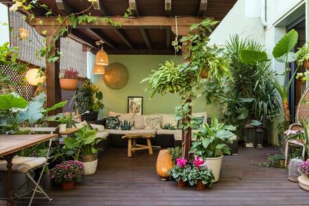 Alojamiento Airbnb Oasis De Naturaleza En Madrid Comunidad De Madrid 1