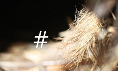 Twitter anuncia las #Devnest, sus encuentros oficiales para desarrolladores