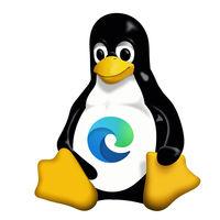El nuevo Edge basado en Chromium muy cerca de ampliar mercado: aparece ejecutándose sobre Linux en la Build 2020
