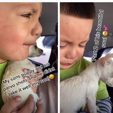 El tierno vídeo viral en el que un niño rompe a llorar desconsoladamente cuando vacunan a su perrito