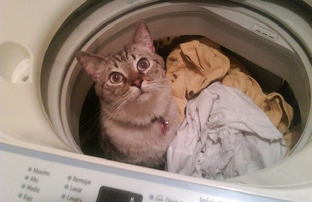 ¿Hasta qué punto es recomendable lavar en frío para ahorrar?