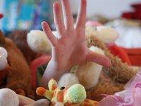 Una empresa de alquiler de juguetes on-line ¿por qué no?