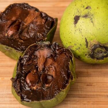 Beneficios del zapote negro y cómo usarlo en la cocina mexicana