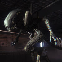 Alien: Isolation por menos de 2 euros en PC, Alien Blackout para descargar gratis en Android y más para celebrar el Alien Day