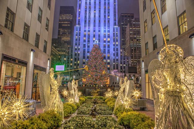 Así es cómo el Rockefeller Center elige su emblemático árbol de Navidad
