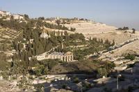 El Monte de los Olivos en Jerusalén (I)