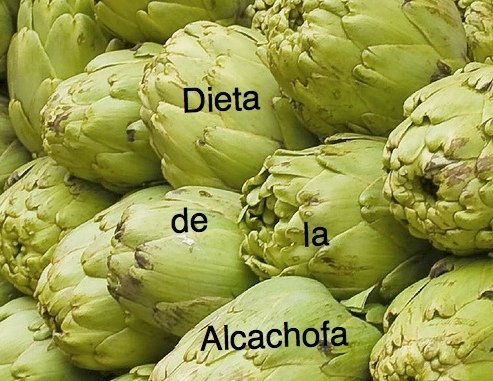 Sirve la alcachofa natural para bajar de peso