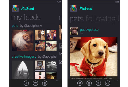 PicFeed WP8