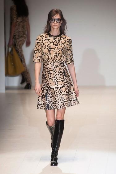 Tendencias otoño-invierno 2014/2015: ¿por qué el print animal nunca pasa de moda?