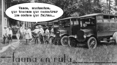 Pero, ¿cuántos coches hay en España?