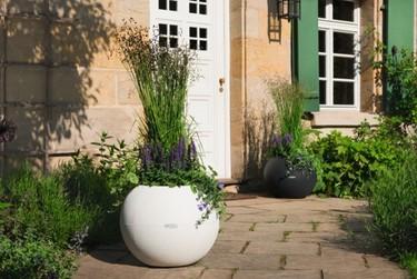 Lechuza y su maceta esférica de exterior ideal para separar ambientes
