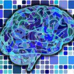 ¿Cuánto nos costaría simular un cerebro humano? Mucho más de lo que crees