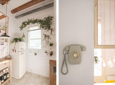 La semana decorativa: plantas como complemento decorativo perfecto