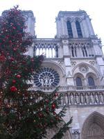 Navidad: 3 lugares y 3 momentos en París