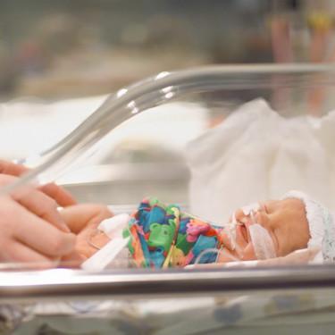 Cómo funciona una incubadora