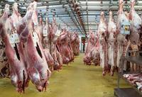Cada vez queremos más carne (y II): la carne sintetizada en laboratorio