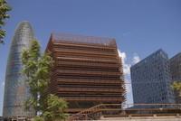 CMT enero 2013: Movistar y Vodafone no levantan cabeza, las OMVs no dejan de crecer