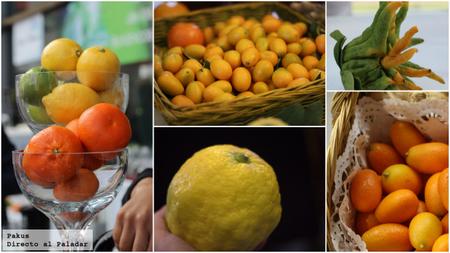 variedades de citricos