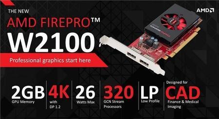 amd-firepro-w2100-especificaciones.jpg