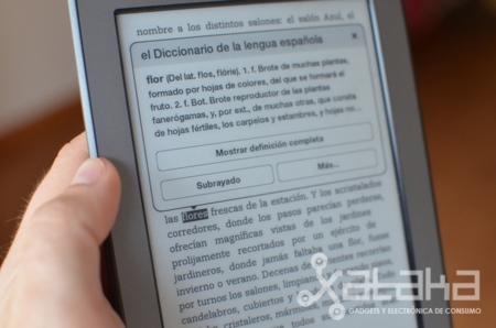 Kindle Touch análisis diccionario