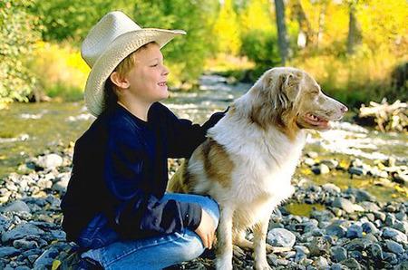Niños que hacen daño a los animales