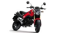 Honda MSX125, vídeo exclusivo