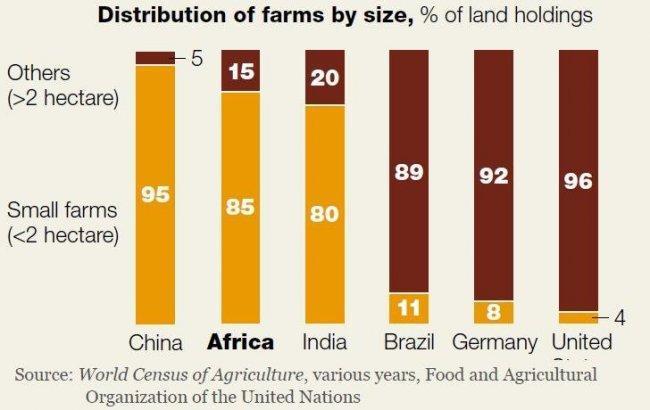 mckinsey-africa-agriculture.JPG