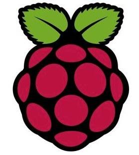 Logo de la Raspberry Pi