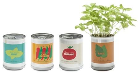 Plantas en lata: MicroGiardini