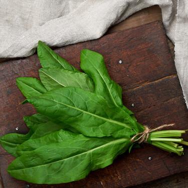 Acedera de temporada (o vinagrera), una curiosa verdura de verano: qué es, propiedades y cómo utilizarla en cocina