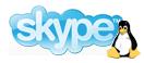Skype 1.4 para Linux disponible para su descarga