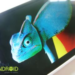 Foto 19 de 50 de la galería sony-xperia-s-analisis-a-fondo en Xataka Android