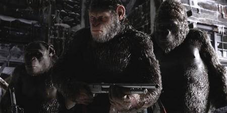 War Apes 3