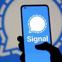 Las mejoras que llegan a Signal: wallpapers, stickers animados y llamadas de voz más completas