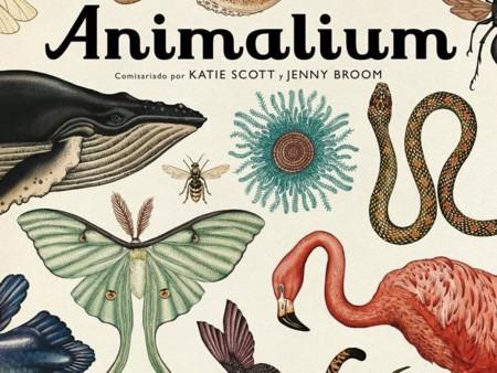 Animalium pra el Día de la Madre