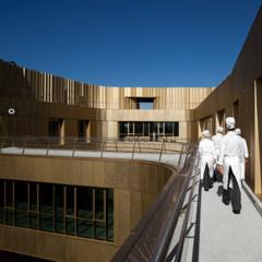 Foto 8 de 14 de la galería espacios-para-trabajar-basque-culinary-center en Decoesfera