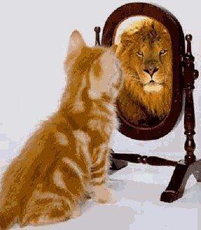 narcisismo.jpg