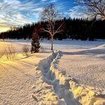 Compañeros de ruta: empezamos enero con frío y nieve a raudales