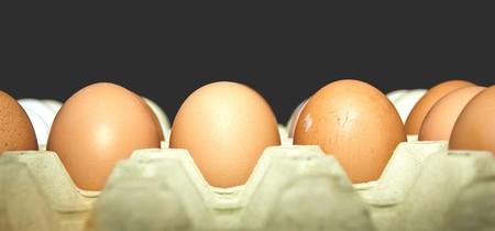 Pexels Eggs Belgium
