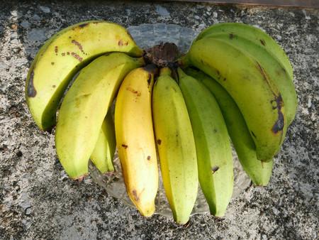 Plátano gros michel