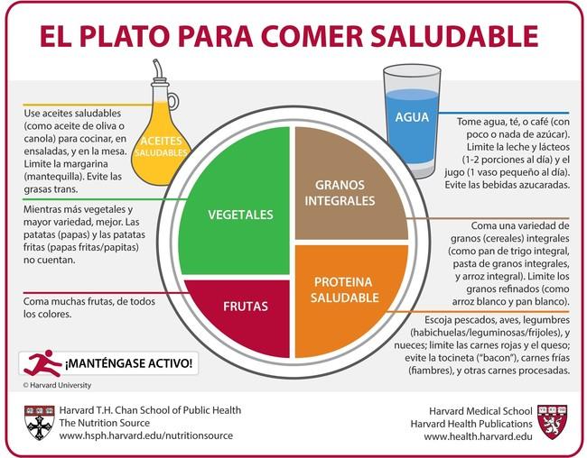Plato Saludable Harvard