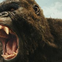Godzilla y King Kong ya tienen director para su colosal duelo: Adam Wingard