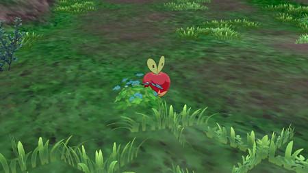 Pokemon Isla Armadura