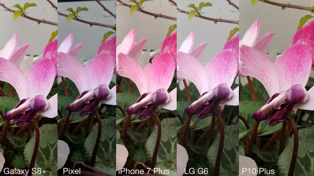 Flores Recorte Grande Peque