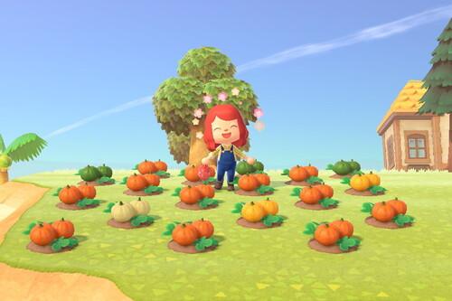 Cómo cultivar, plantar y cosechar calabazas en Animal Crossing: New Horizons
