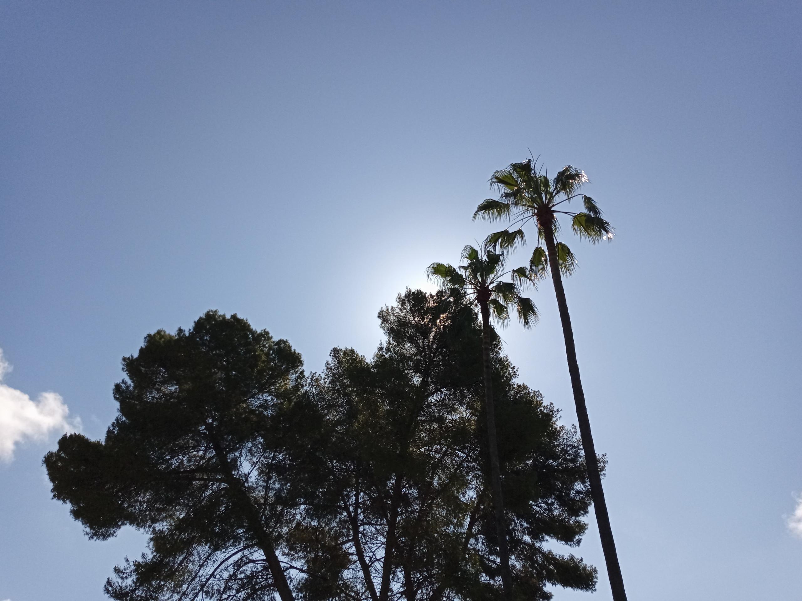 Foto de Más fotografías con el Sony Xperia L4 (2/42)
