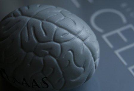 En el Día Internacional del Alzheimer te contamos cómo prevenirlo